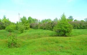 Место, где стоял Крестовоздвиженский храм, с. Кшень
